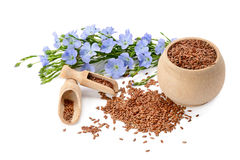 Flores e flaxseeds Fotografia de Stock Royalty Free