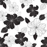 Flores e folha preto e branco do hibiscus da repetição sem emenda do vetor Fotografia de Stock