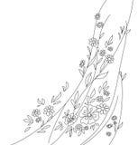 Flores e folhas, contornos Fotografia de Stock