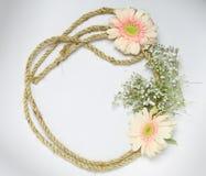 Flores e folhas cor-de-rosa do verde fotos de stock