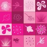 Flores e folhas pintadas fundo do outono Fotos de Stock