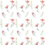 Flores e folhas sem emenda Imagens de Stock