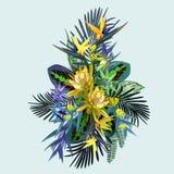 Flores e folhas tropicais ilustração royalty free