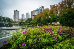 Flores e fonte em Hong Kong Zoological And Botanical Garde fotografia de stock royalty free