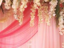 Flores e fundo bonitos da cortina Fotos de Stock Royalty Free