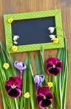 Flores e grama coloridas Imagem de Stock Royalty Free