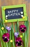 Flores e grama coloridas Foto de Stock