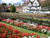 Flores e hierba de la orilla del agua que pasan por alto el río que corre a través de la ciudad Imagen de archivo