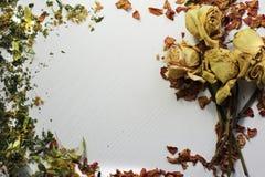 Flores e hierba en una tabla blanca Fotografía de archivo