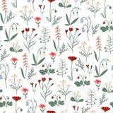 Flores e hierbas de la primavera Ornamento floral para las materias textiles stock de ilustración