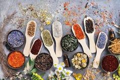 Flores e hierbas para la medicina alternativa, fondo de la atención sanitaria imágenes de archivo libres de regalías