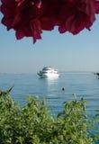 Flores e iate bonitos no fundo do Mar Vermelho Fotografia de Stock Royalty Free