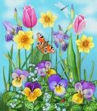 Flores e insetos coloridos bonitos Imagens de Stock Royalty Free