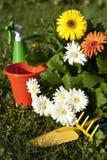Flores e jardins 5 Imagem de Stock Royalty Free