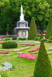 Flores e jardins em Peterhof fotografia de stock