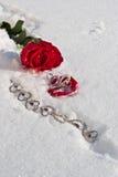 Flores e joalheiro Imagem de Stock