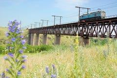 Flores e locomotiva Imagem de Stock