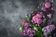 Flores e macarons lilás bonitos da amora-preta na placa do vintage Imagem de Stock Royalty Free