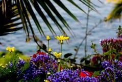 Flores e mar Fotografia de Stock Royalty Free