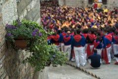 Flores e multidão Fotografia de Stock Royalty Free
