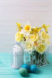 Flores e ovos da páscoa amarelos dos narcisos amarelos da mola Fotografia de Stock Royalty Free