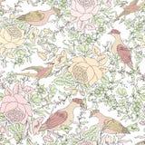 Flores e pássaros Fundo floral Teste padrão de flor Fotos de Stock Royalty Free