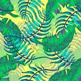 Flores e palma tropicais A Fotografia de Stock