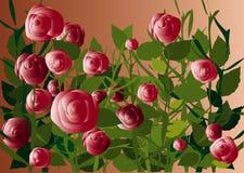 Flores e plantas Fotografia de Stock Royalty Free