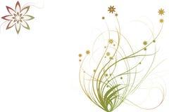 Flores e plantas abstratas Imagem de Stock