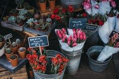 Flores e plantas em pasta na venda em um mercado de rua imagem de stock