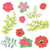 Flores e projeto do vetor da coleção dos ramos da folha ilustração do vetor