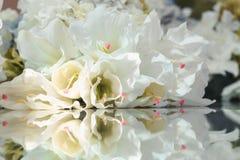 Flores e sua reflexão Fundo da flor Imagem de Stock