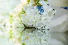 Flores e sua reflexão Fundo da flor Fotografia de Stock Royalty Free