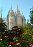 Flores e templo de Salt Lake Fotografia de Stock Royalty Free