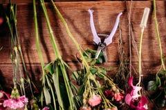 Flores e tesoura de podar manual do jardim na loja floral imagem de stock