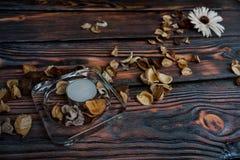 Flores e vela secas Imagem de Stock
