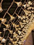 Flores el?tricas, inverno em Jap?o foto de stock royalty free