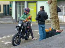 Flores em Açores fotos de stock royalty free