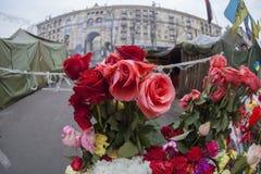 Flores em barricadas. imagem de stock