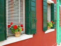 Flores em Burano Imagens de Stock Royalty Free