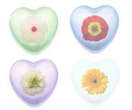 Flores em formas do coração Fotografia de Stock