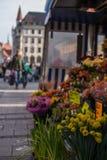 Flores em Marienplatz fotografia de stock
