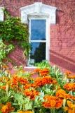 Flores em pasta na frente de uma casa velha de Nebraska Foto de Stock Royalty Free