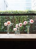 Flores em seguido Fotos de Stock