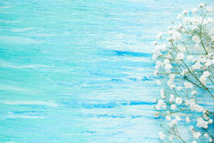 Flores em um azul de madeira Fotos de Stock Royalty Free