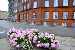 Flores em um canto na cidade de Aarhus fotos de stock royalty free