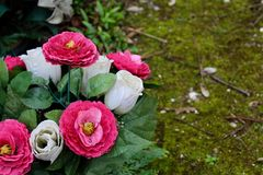 Flores em um cemitério, Pere Lachaise Paris, França fotos de stock