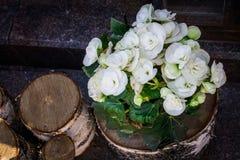Flores em um coto de árvore Foto de Stock Royalty Free