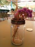 Flores em um frasco Fotos de Stock