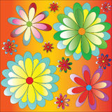 Flores em um fundo colorido foto de stock royalty free